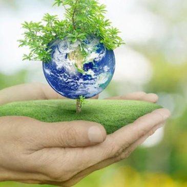 Акцію щодо охорони довкілля підтримали шполянські безробітні громадяни