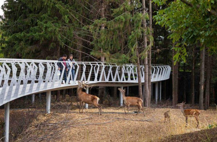 Експозиції черкаського зоопарку ввійшли до 15-ти кращих урбаністичних проєктів України